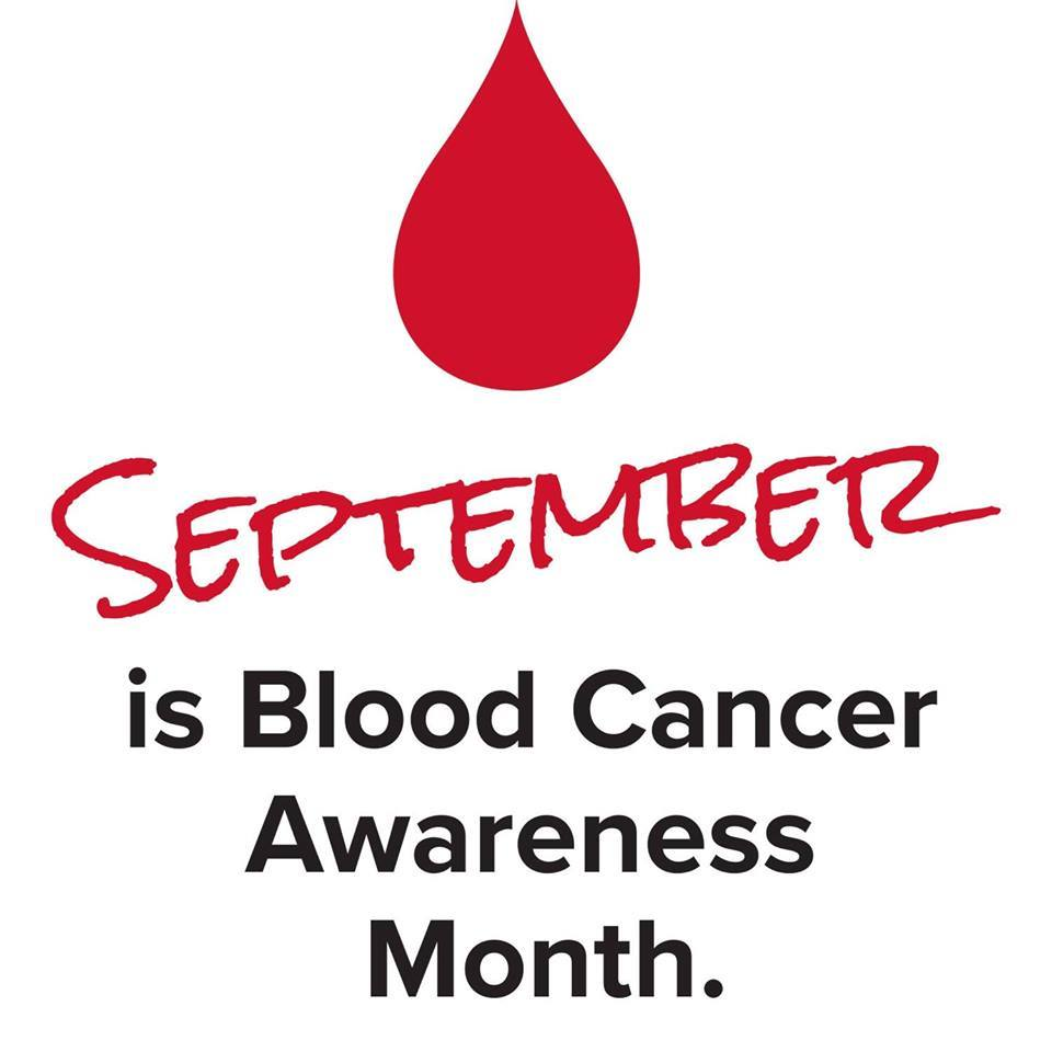 Image result for september causes and awareness
